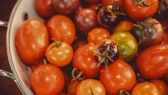 Importforbud af tomater og peberfrugter fra Sicilien til Malta